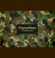 army and military camouflage texture pattern vector image vector image