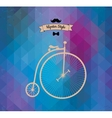 Hipster monocycle Triangle background vector image vector image