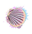 top view sea shell scallops from a splash vector image