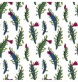 abstract seamless pattern with cactus vector image