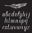 chalk alphabet on blackboard vector image