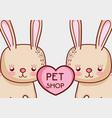 cute bunnies doodle cartoons vector image vector image