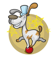 dog on the ball vector image vector image