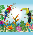 tropical and exotics flowers with toucan and vector image