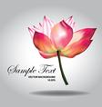 Beautiful pink lotus vector image