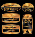 best choice golden set vector image vector image