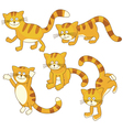 Playful kitten vector image vector image