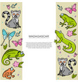 banner template with set madagascar animals vector image vector image