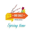 Big Sale banner on a white background vector image