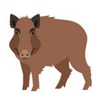 cute smiling wild boar cartoon vector image vector image