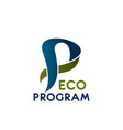eco program sign vector image