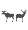 Elk Deer vector image vector image