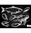 hand drawn seafood chalkboard set vector image