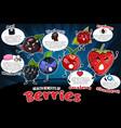 health benefits of berries vector image