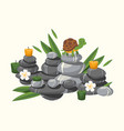 spa stones composition with candles and flowers vector image