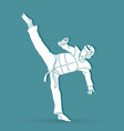 taekwondo kick action with guard equipment graphic vector image vector image