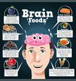 brain foods vector image