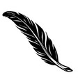 elegant vintage feather tattoo concept vector image vector image