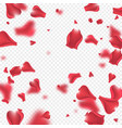 flying rose petals background vector image vector image