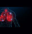 human lungs respiratory virus and coronavirus vector image