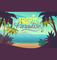 palm tree beach ocean sunset with sand coast vector image