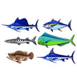 set saltwater game fish vector image vector image