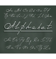 handwriting font with elegant swirls vector image