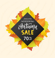 autumn sale banner template vector image vector image