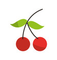 cherry fresh fruit isolated icon vector image vector image