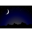 Dark moonlight night background vector image vector image