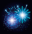 decorative fireworks explosions poster vector image
