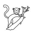 funny monkey wild character vector image