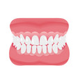 jaw with teeth icon flat style open mouth vector image vector image