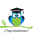 owl graduate with cap cartoon symbol vector image