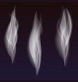 set of delicate white cigarette smoke waves vector image