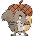 squirrel nut vector image vector image
