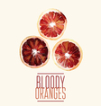 bloody oranges vector image vector image