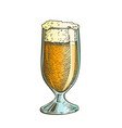 color drawn classical glass with foam beer vector image vector image