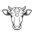 cow head icon outline drawn style vector image