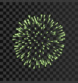 firework green bursting isolated transparent vector image