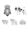 forest ecology toys and other web icon in vector image vector image