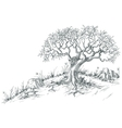 Olive tree graphic vector image
