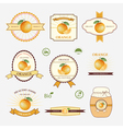 Orange set of label design and templates vector image
