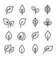 leaf line icon set vector image