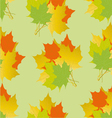 Autumn bouquets vector image