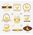 banana set of label design and templates vector image