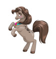 beautiful little brown young horse pony princess vector image