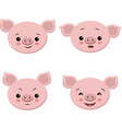 collection of cute pigs in cartoon style set vector image
