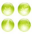 floral balls vector image vector image