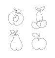 one line continuous fruits vector image
